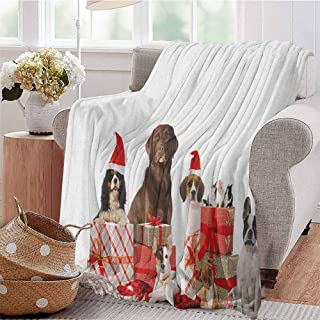 Luoiaax Christmas Children's Blanket Several Pets with Surprise Adorable Dogs Cats and Rabbits Lightweight Soft Warm and Comfortable W70 x L90 Inch Brown Red White