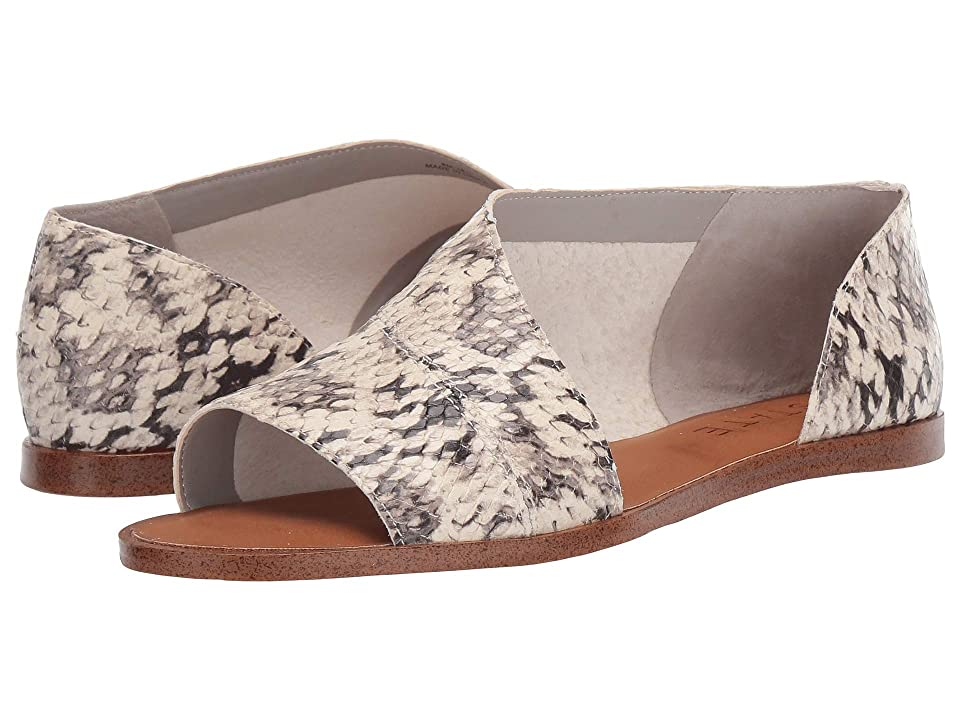 1.STATE Celvin (Roccia Whips Snake Print Leather) Women