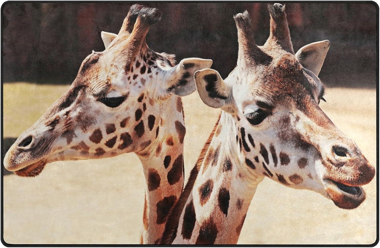 HEOEH Cute Animal Giraffes Doormats Area Rug Rugs Non-Slip Floor Mat Indoor Outdoor 60x39 inch
