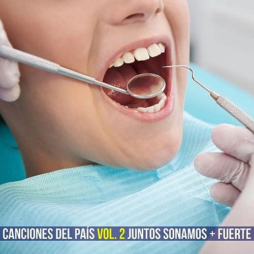 Canciones del País, Vol. 2: Juntos Sonamos + Fuerte