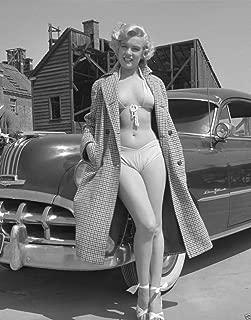 Marilyn Monroe In Bikini Pinup Model Photo Art Hollywood Photos Artwork 8x10