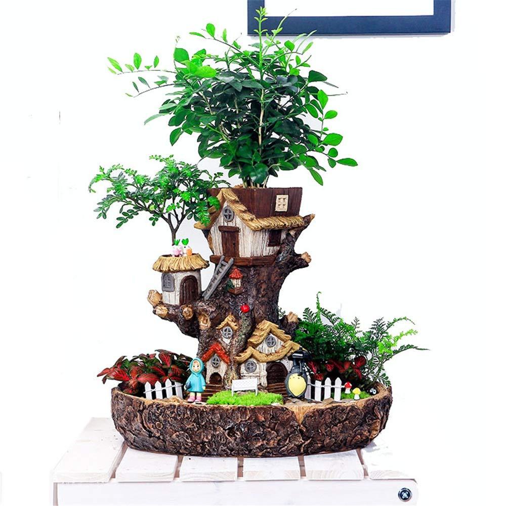 Jardín de Hadas Plantas Florales Olla suculenta, diseño de Hadas, contenedor de Bricolaje y casa Dulce Figuras de jardín en Miniatura (Color : Tree House, tamaño : 26.8cm*29cm): Amazon.es: Hogar