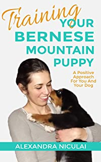 TRAINING YOUR BERNESE MOUNTAIN PUPPY: A Positive Approach For You And Your Dog