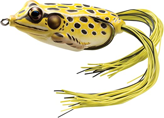 LIVETARGET FGP65T500 Frog Popper Green//yellow #6 Fishing Lure for sale online