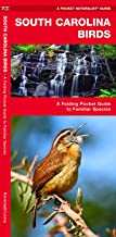 Best southeastern us birds Reviews