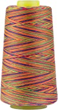 Best variegated quilting thread Reviews