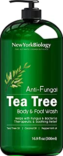 Antifungal Tea Tree Body Wash - HUGE 16 OZ - Helps Nail Fungus, Athletes Foot, Ringworms, Jock Itch, Acne, Eczema & Body O...