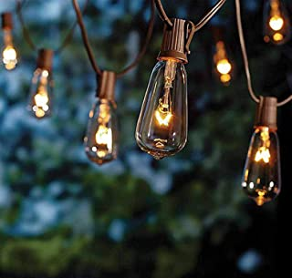SkrLights 20Ft Edison String Lights, Set of 21 Glass Clear Bulbs ST40 Edison Style Bulb String Lights Garden/Backyard Party/Wedding Indoor Outdoor Patio String Lights(Plus 1 Extra Bulbs)-Brown Wire