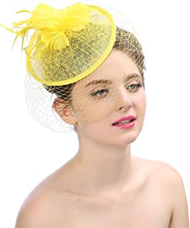 Women Party Fascinator Birdcage Wedding Pillbox Hat with Net Feather