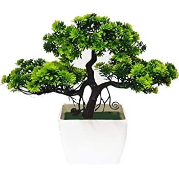 Litleo for Home, Office Table, Gift Bonsai Artificial Plant with Pot (24 cm,)