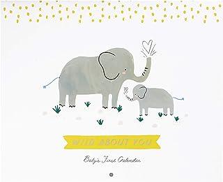 C.R. Gibson BA3-22583 Cute Elephants ''Wild About You'' Gender Neutral First Year Baby Calendar, 11'' W x 18'' H