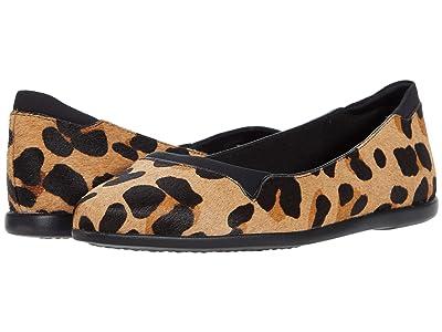 Cole Haan Grand Ambition Skimmer (Jaguar Haircalf) Women