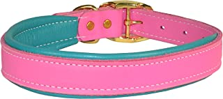 Perri's DC100 Padded Leather Dog Collar, X-Small, Pink/Turquoise