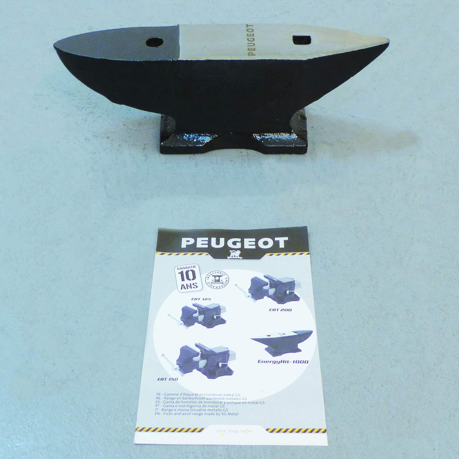 ENERGYHit 1000 - Yunque profesional 10 kg Ancho 70 mm Largo 340 mm Alto 100 mm: Amazon.es: Bricolaje y herramientas