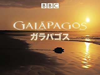 ガラパゴス(字幕版)