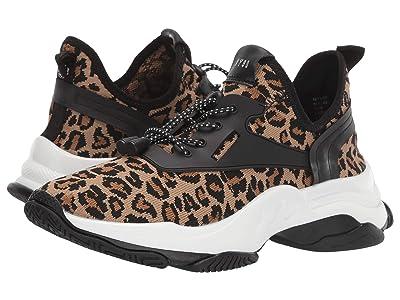 Steve Madden Myles Sneaker (Leopard) Women