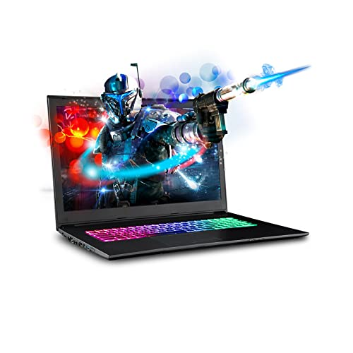 "SAGER NP7871 17.3"" FHD 144Hz Gaming Laptop, Intel Core i7-8750H, NVIDIA"