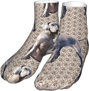 TongGuYunShangMaoYouXianGongSi, Calcetines Calcetín Compresión de Weimaraners para perros Calcetines Altos 30CM