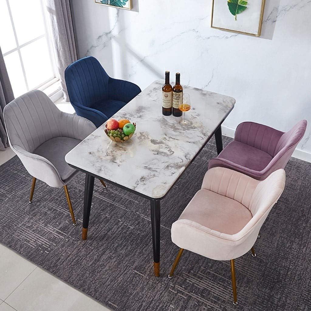 HEJINXL Chaises Salle Manger Chaises Bureau Chambre Chaise Velours Tissu Pad Indépendant For Chaise Bureau Maquillage Café Luxe Chaise Réception 2pcs (Color : E) D