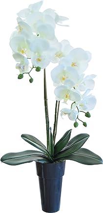 Amazones Orquideas Artificiales Arreglos Florales