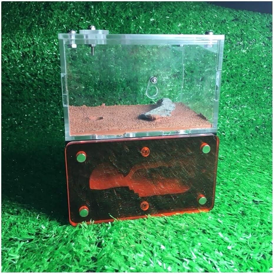 Industry No. 1 LLNN Insect Villa Acryl Ant Gypsum Farm San Antonio Mall DIY Nest