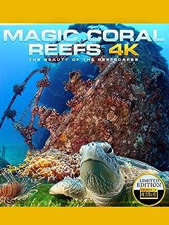 Magic Coral Reef