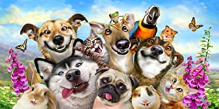 JGR Copa Dog Cat Parrot Hamster Pet Selfie 30x60 Beach Towel