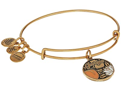 Alex and Ani Places We Love Georgia Bangle (Rafaelian Gold) Bracelet