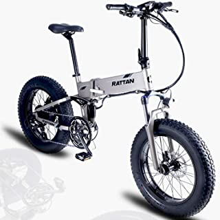 Rattan Fat Bear 20 Inch Full Suspension Fat Tire Snow Electric Bicycle 48V 500W 11.6AH Lithium Battery max 750W Beach Electric Bike Adults EBike Smart I-PAS Power System 8 Speed E-Bike