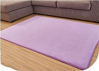 Fashion Memory Foam Solid Mat Area Rug Bedroom Rugs Mats Carpet Doormat for Hallway Living Room Kitchen Floor Outdoor,Purple,500mm x 1200mm