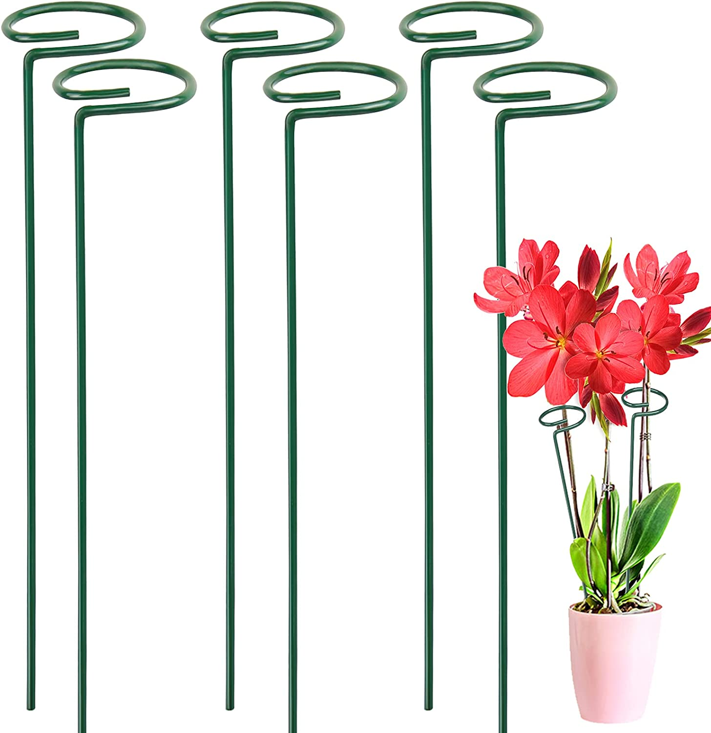 LEOBRO 6 Pack Plant Stakes Metal Stem Flowers for Max 73% OFF Single Import