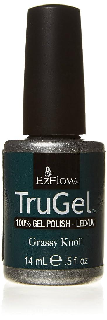 整理する広範囲不適切なEzFlow トゥルージェル カラージェル EZ-42425 グレースクノール 14ml