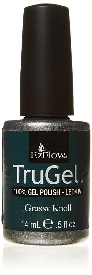 感情の作曲家一時停止EzFlow トゥルージェル カラージェル EZ-42425 グレースクノール 14ml