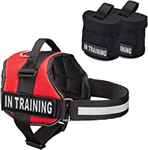 Industrial Puppy Service Dog in Training Vest with Hook and Loop Straps and Detachable Backpacks - Animal Vests from XXS to XXL - Service Dog Harness with Reflective Patch & Comfortable Mesh Design