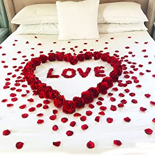 Red Roses & Petals & Love - Anniversary Decorations - Romantic Gifts for Her - Wedding Valentine Anniversary
