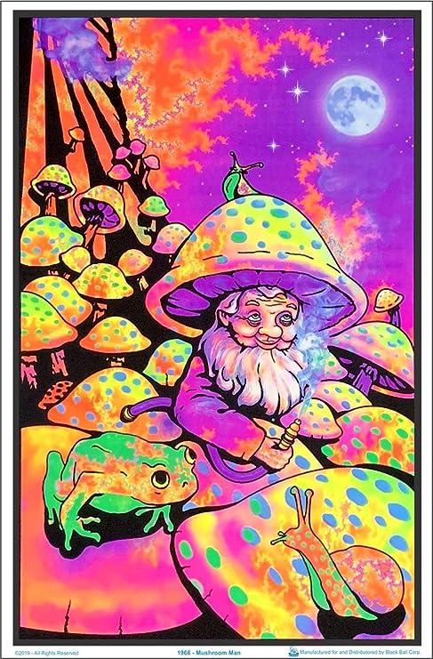 "23.5/"" x 35.5/"" Wonderland II Laminated Blacklight Poster"