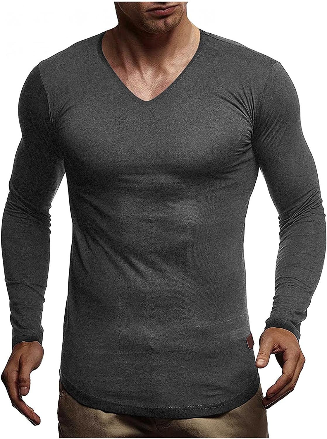 LEIYAN Mens Casual Muscle Shirts Hipster Long Sleeve V-Neck Lightweight Bodybuilding Fitness Gym Workout Tops