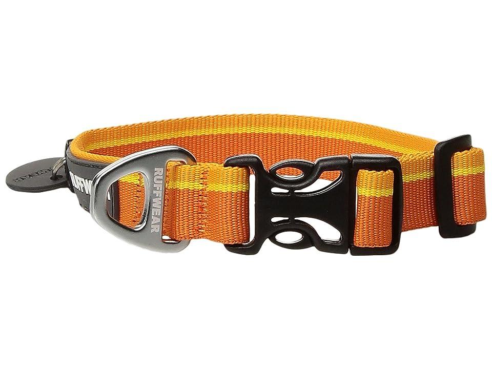 Ruffwear Hoopietm Collar (Orange Sunset) Dog Collar