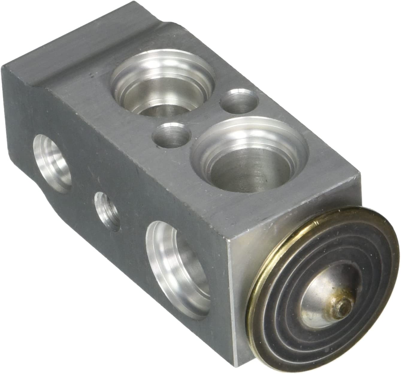 Four All stores are sold Seasons Discount mail order 39033 Valve Expansion