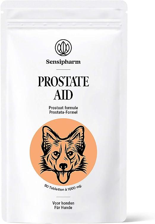prostata hund schmerzen)