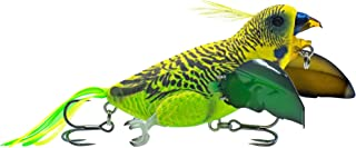 Best bird fishing lure Reviews