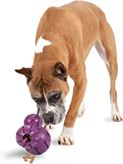 PetSafe Busy Buddy Barnacle - Dog Chew Toy - Treat Dispensing Dog Toys