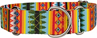 Country Brook Design - 1 1/2 Inch Summer Pines Martingale Dog Collar - Large