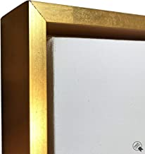 Best gold floating frame for canvas Reviews