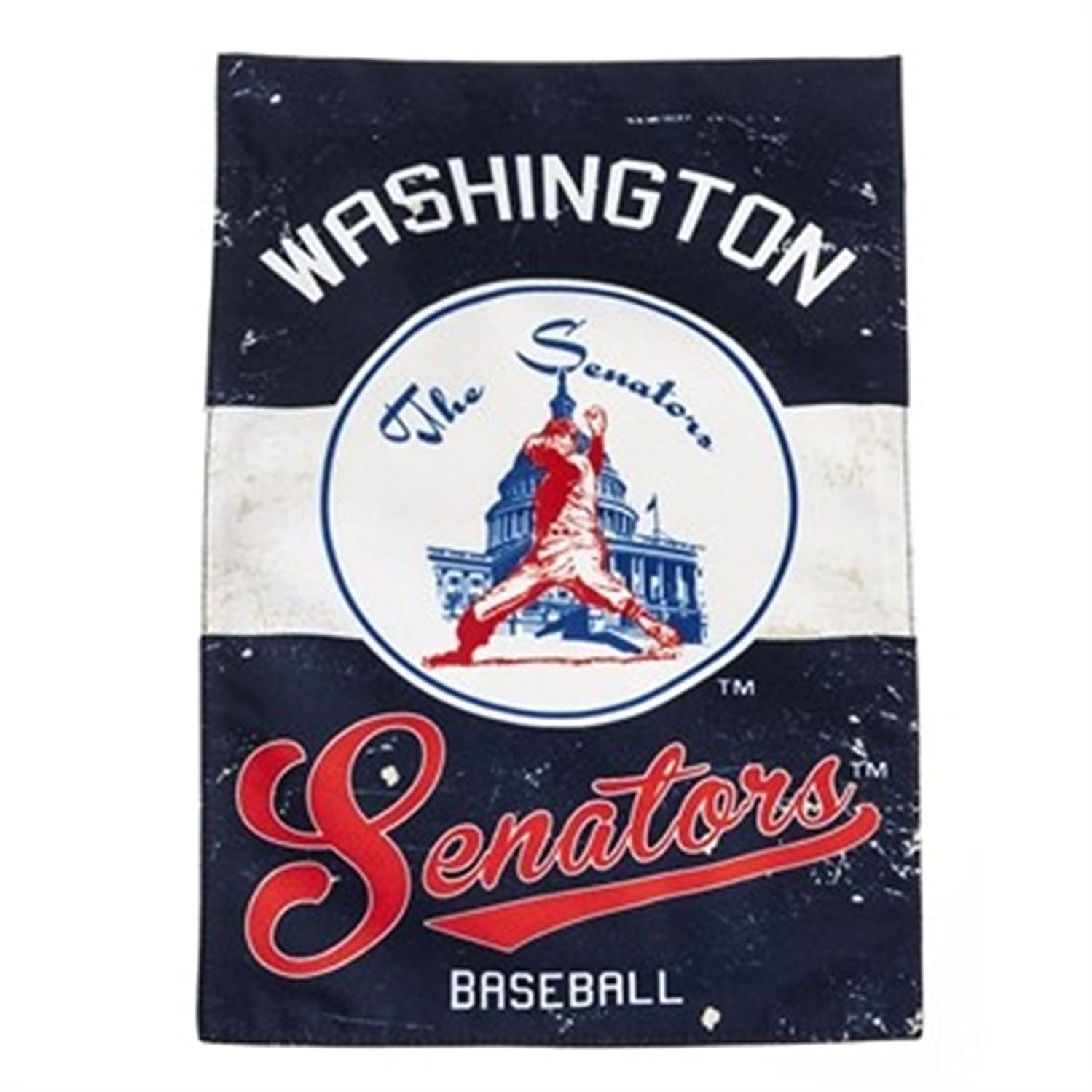 Washington Nationals EG VINTAGE RETRO 2-sided 28x44 BANNER House Flag Senators Baseball