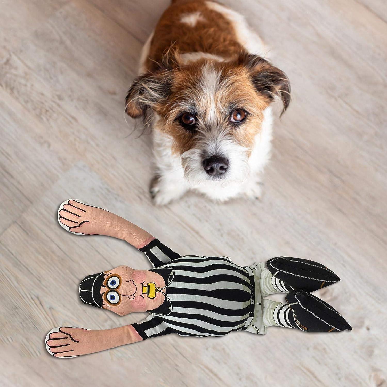 Juguetes chillones Suministros Grandes para Mascotas Wisson Juguete para Perros chillones Divertido y Seguro Paquete de Juguetes para Masticar Exquisito Juguete con Sonido para Mascotas