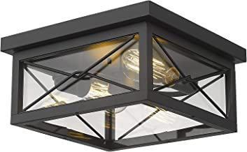 Amazon Com Outdoor Ceiling Lights