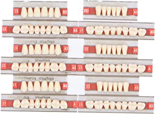 Wecando 84 Pcs Dental Synthetic Resin Tooth Denture 3 Sets False Teeth for Halloween Horror Teeth 23 A3