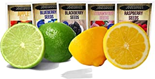 Fruit Combo Pack Raspberry, BlackBerry, Blueberry, Strawberry, Apple 565+ Seeds + Key Lime, Kieffer Lime, Pink Eureka