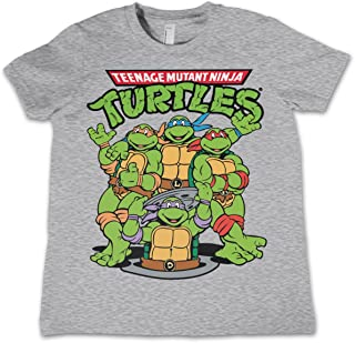 c4c4c5f28 Teenage Mutant Ninja Turtles T Shirt Group Official Kids Heather Grey  3-12Yrs